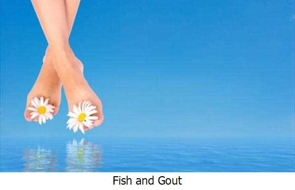 Fish and Gout