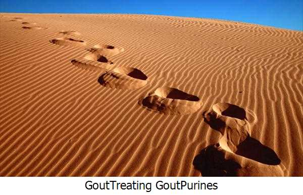 Gout,Treating Gout,Purines