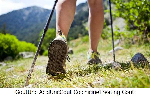 Gout,Uric Acid,Uric,Gout Colchicine,Treating Gout