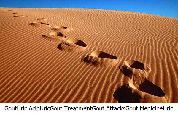 Gout,Uric Acid,Uric,Gout Treatment,Gout Attacks,Gout Medicine,Uric Acid Level,Gout Treatments,Decrease Uric Acid,Elbow Gout,Gout Patients,Purines