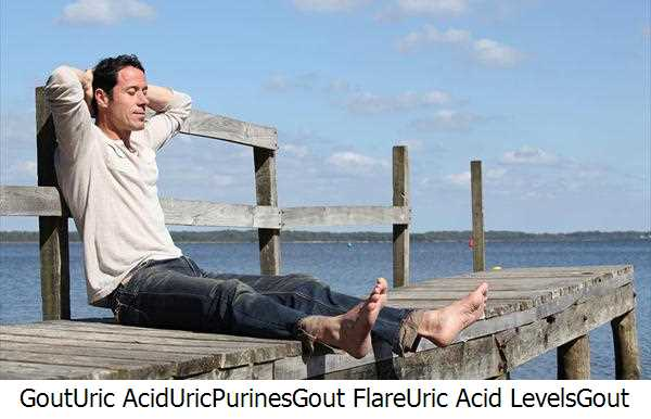 Gout,Uric Acid,Uric,Purines,Gout Flare,Uric Acid Levels,Gout Symptoms,Gout Attacks,Foods Gout,Relieve Gout