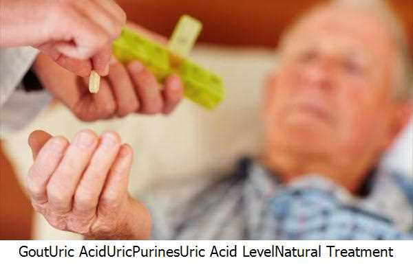 Gout,Uric Acid,Uric,Purines,Uric Acid Level,Natural Treatment Gout,Uric Acid Levels,Gout Attacks,Gout Patients