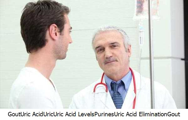 Gout,Uric Acid,Uric,Uric Acid Levels,Purines,Uric Acid Elimination,Gout Attacks